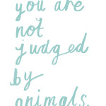 You are not judged by animals