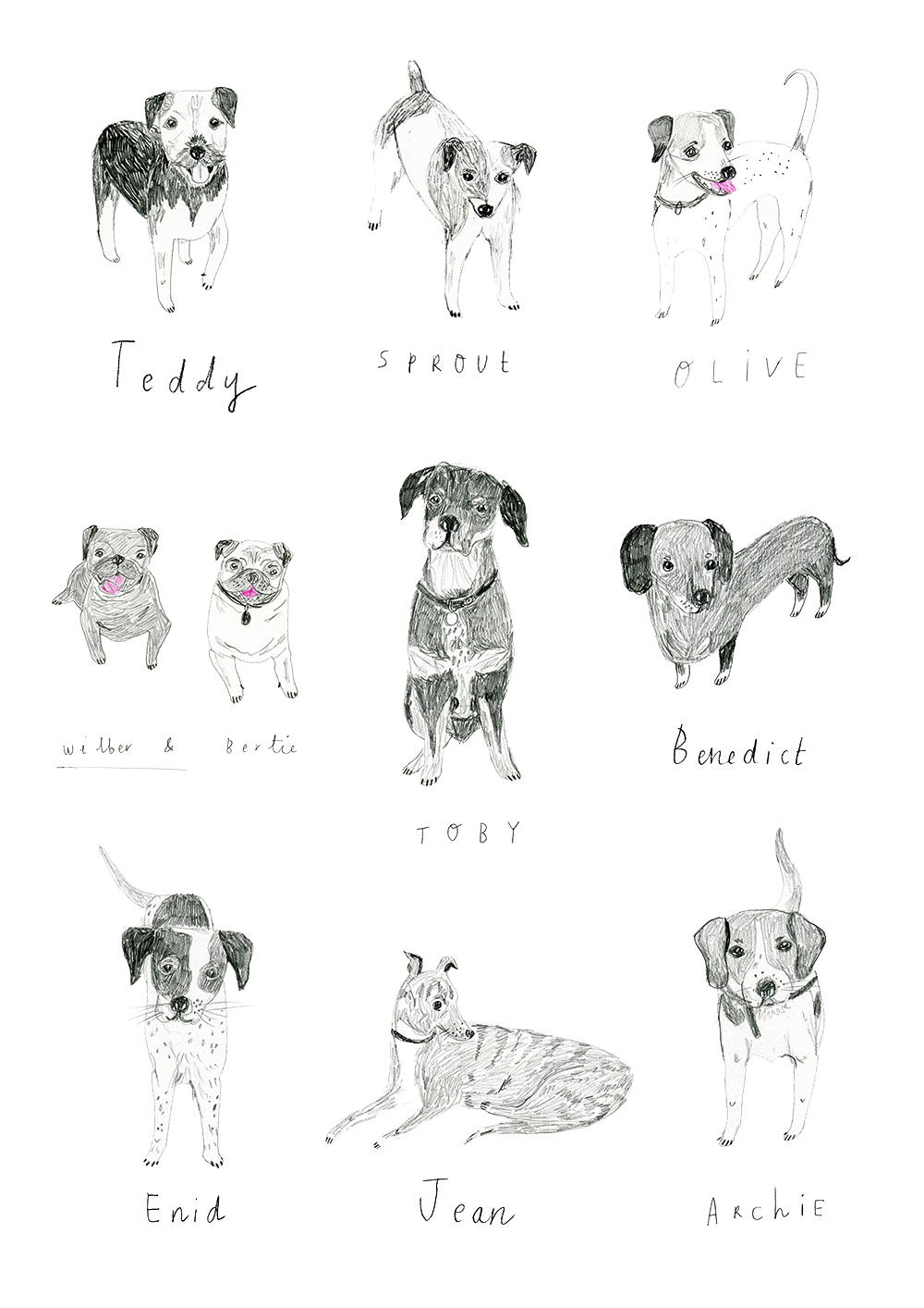 dogs_boden